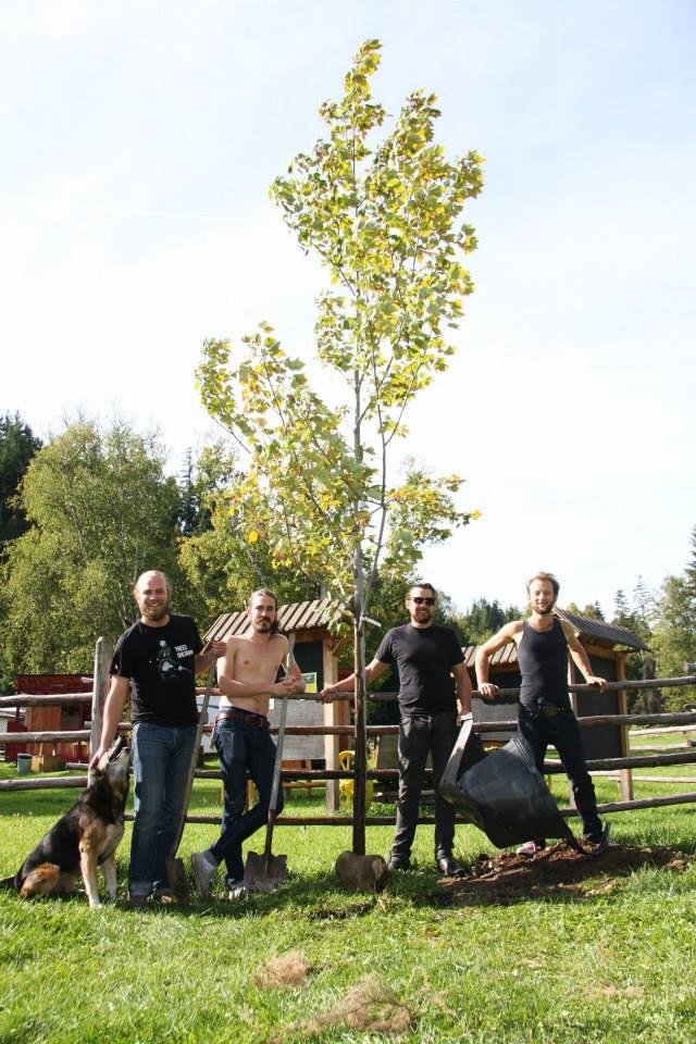 The Landreth Tree